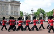 London Guide : Buckingham Palace Changing of the Guard