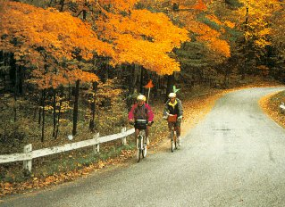 Fall foliage in the Berkshires.