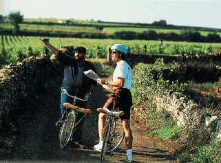 Pausing for directions in a Burgundy vineyard.