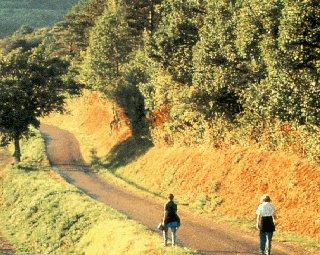 A couple enjoys a walking tour of Burgundy.