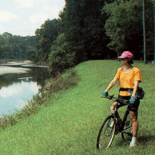 A biker pauses to admire the scenery.