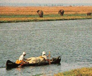 Canoeing on the Zambezi.