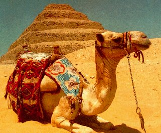 essay about traveling to egypt 2 you learn to live in the moment whether you are seeing the canals of venice for the first time or the pyramids of egypt, traveling teaches you to take in the moment of awe and make the most of it.