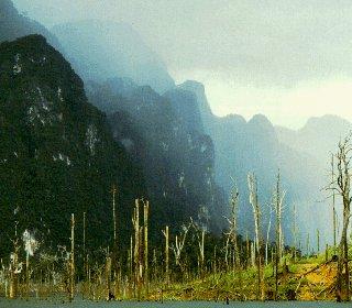 The Khao Sok National Park.