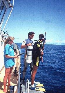 Preparing to enter the ocean off Australia.