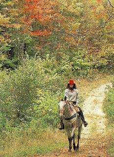 Autumn colors highlight ride.