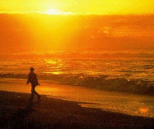 Stroll along the Pacific Ocean at Stimson Beach.