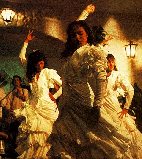 Performance of exciting flamenco dance.