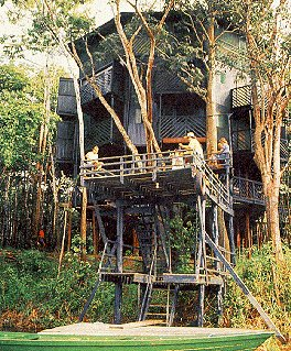 Imagine staying in this Amazonian treehouse.
