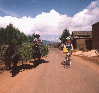 Typical road traffic in Yunnan, China.