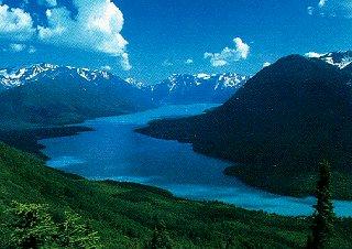Fish in Alaska's sky-blue rivers.