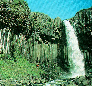 Svartifoss (Black) Waterfall, Iceland.
