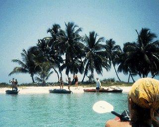 Landing on an idyllic island.