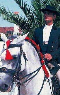 Rider in Portugal.