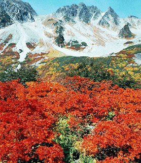 The lovely Japanese Alps.