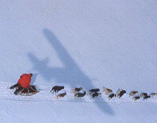 Follow the Iditarod Race by bush plane.
